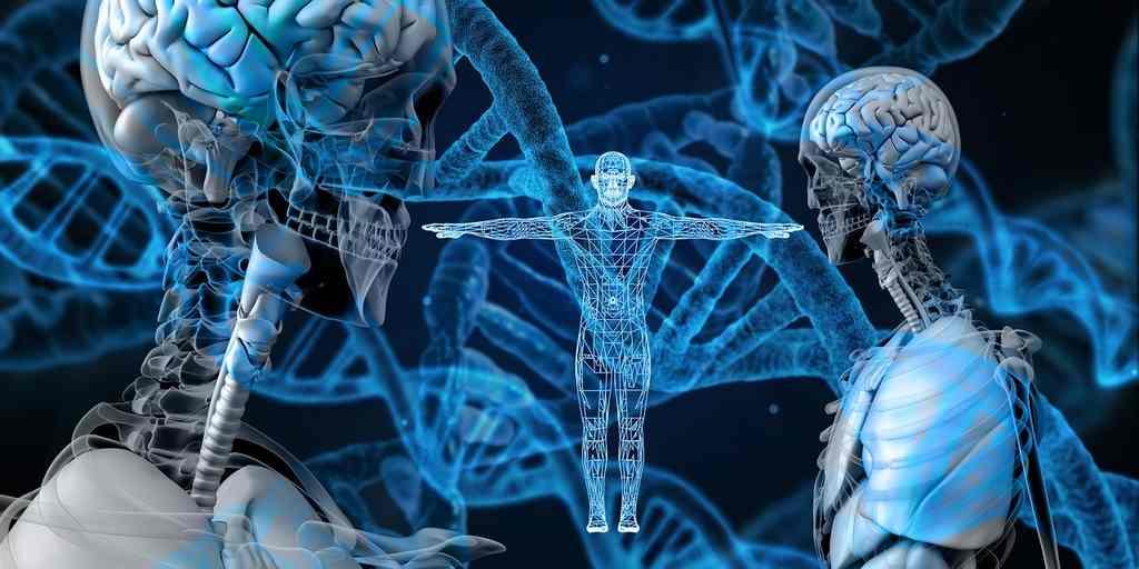 como funciona o mapeamento genetico do DNA